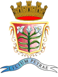 Logo Comune di Petralia Sottana